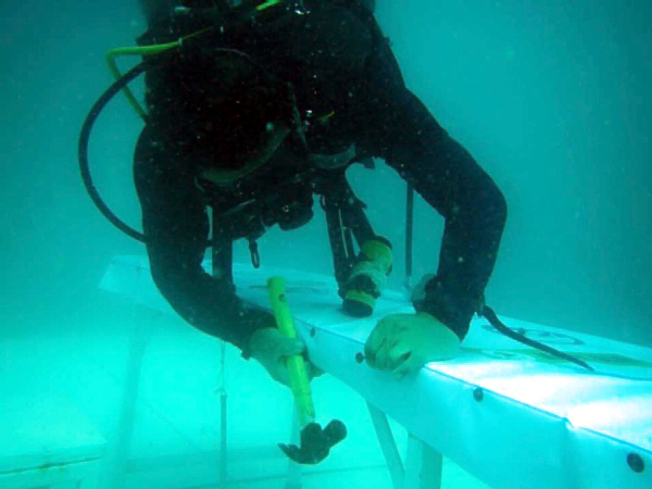 trang_underwaterwedding007